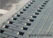 Z型伸縮縫修補價格-建筑F型衡水伸縮縫廠家