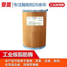 工业级脂肪酶