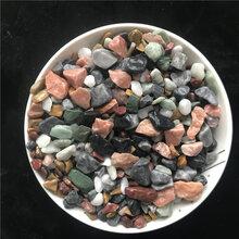 供应公园道路用彩色石子小区地坪用石子鱼缸过滤用小石子图片