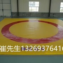 北京厂家直销散打垫子摔跤垫子柔道垫子图片