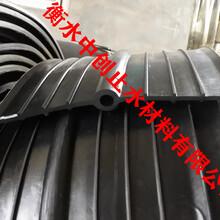 中埋式止水帶-651型橡膠止水帶-中置式止水帶廠家圖片