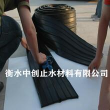 雅安230mm×6mm橡膠止水帶型號齊全圖片