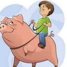 養豬電熱線、豬舍電地暖、養豬發熱線、豬舍保溫-豬場建設圖片