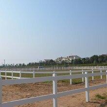 天津马场围栏pvc护栏农场围栏厂家直销图片