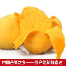 广西小台农芒果带箱10斤新鲜当季水果p批发图片