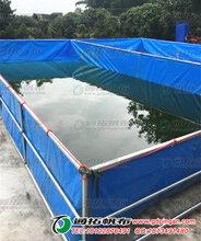 帆布鱼池_夹网布鱼池防渗好耐刮广大养殖场都在用_中山养殖池加工厂图片