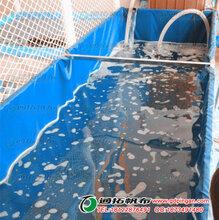 三亚养殖农用帆布池_尺寸定制_虾池加工_通拓厂家图片