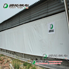 牛场卷帘规格定做_透光白色PVC涂层布通拓帆布厂家
