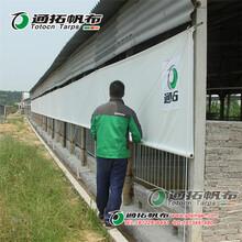 养殖挂帘篷布_透光好耐晒可用10年_河北通拓帆布材料厂家