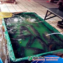 移动鱼池折叠帆布鱼池价格_厂家优质养殖帆布鱼池_帆布鱼池定制图片