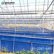 养殖小龙虾专家-养殖帆布水池-通拓帆布厂家图片