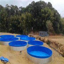 新型镀锌板帆布养殖池-高密度养鱼池-篷布直销
