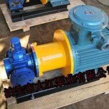 无泄漏齿轮泵专业生产厂家图片