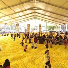 武汉百万海洋球租赁机械大象出租疯狂动物城租赁