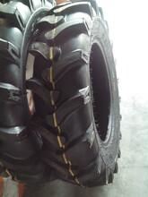 金鹏达轮胎厂家,金鹏达橡胶轮胎价格,金鹏达轮胎价格图片