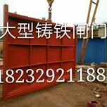 独山县三吨螺杆启闭机黔南螺杆启闭机贵州启闭机厂图片
