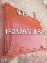 吉林2米1.5米铸铁闸门图片