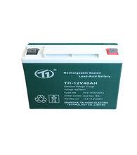 免维护铅酸蓄电池直流屏EPS应急电源专用上海台洪科技
