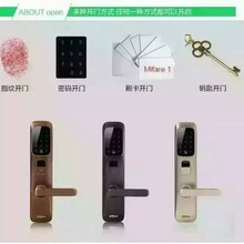 大华指纹密码锁淄博总经销