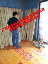 广州灭白蚁,广州专业白蚁防治,广州预防白蚁,广州市杀白蚁公司