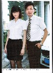 纯棉促销T恤衬衣女士短袖衬衣职业装衬衣裙子
