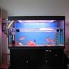 昆明鱼缸维修