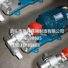 高品质价位低/JCB甲醇泵[JC-B-18.3]-武进导热油泵图片