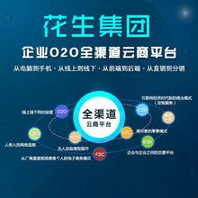 开发O2O跨境电子商务平台要多少钱