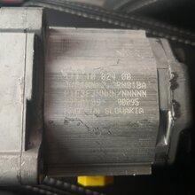 SNP1NN2.2RN01BAP1F3F3NNNNNNN丹佛斯DANFOSS齿轮泵图片