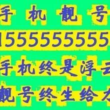 深圳各类手机超级靓号、豹子号超低价销售图片