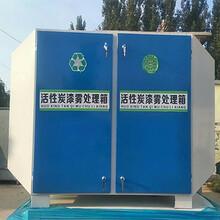 活性炭吸附箱设备漆雾净化设备废气处理设备漆雾油漆异味处理箱
