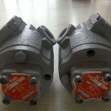 ROP-208HAVB维良油泵图片