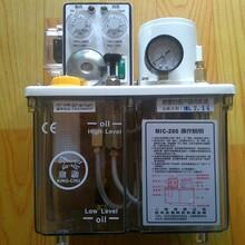電動給油泵浦MIC-200圖片