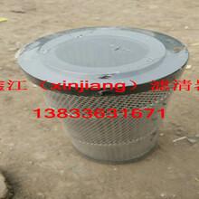 现货供应SF250M25滤芯,鑫江滤清器厂图片