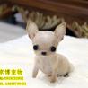 北京哪里卖吉娃娃.吉娃娃多少钱一只