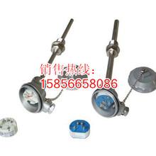 上海华光一体化热电偶成套性价比最高