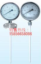 热推挤防腐双金属温度计厂家图片