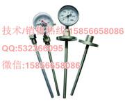 WSSX-451,WSSX-45电接点双金属温度计图片