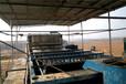 黑河帶式脫水機壓濾機廠家直銷