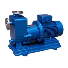 ZCQ型自吸式磁力驱动泵图片