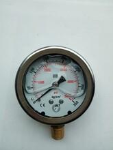供應10-400kg油壓表/臺灣IMT液壓機械壓力表防腐耐酸不銹鋼耐震圖片