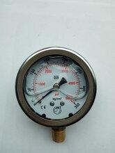 供应10-400kg油压表/台湾IMT液压机械压力表防腐耐酸不锈钢耐震图片