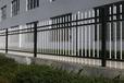 隆化锌钢护栏生产厂家承德铁艺大门供应河北铁艺护栏价格