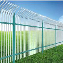 北戴河优质热镀锌护栏保定锌钢公路护栏河北镀锌绿化道路护栏图片