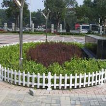 鹰手营子pvc草坪护栏承德pvc花坛围栏河北pvc绿化栏杆厂家直销图片