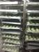 柳州全自动糯米糍粑机价格,柳州白糍粑设备厂家