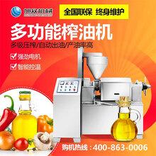 江西菜籽油榨油机,广西榨油机厂家,多功能榨花生油机器