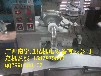 贵州打糍粑机器自动做糍粑机兴义糍粑机