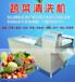 百色汽泡式洗菜机,百色叶类蔬菜清洗机,百色不锈钢蔬菜清洗机