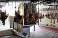大型家禽屠宰机械:时产3000只的自动喷淋式烫毛机
